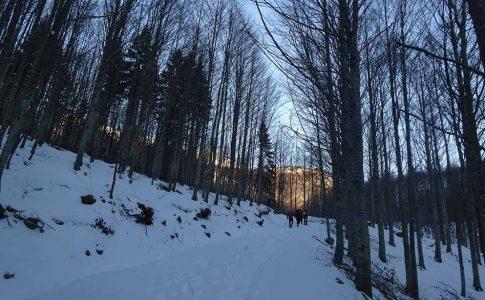 Condizioni neve e ghiaccio Appennino Settentrionale - Week 3 4 5