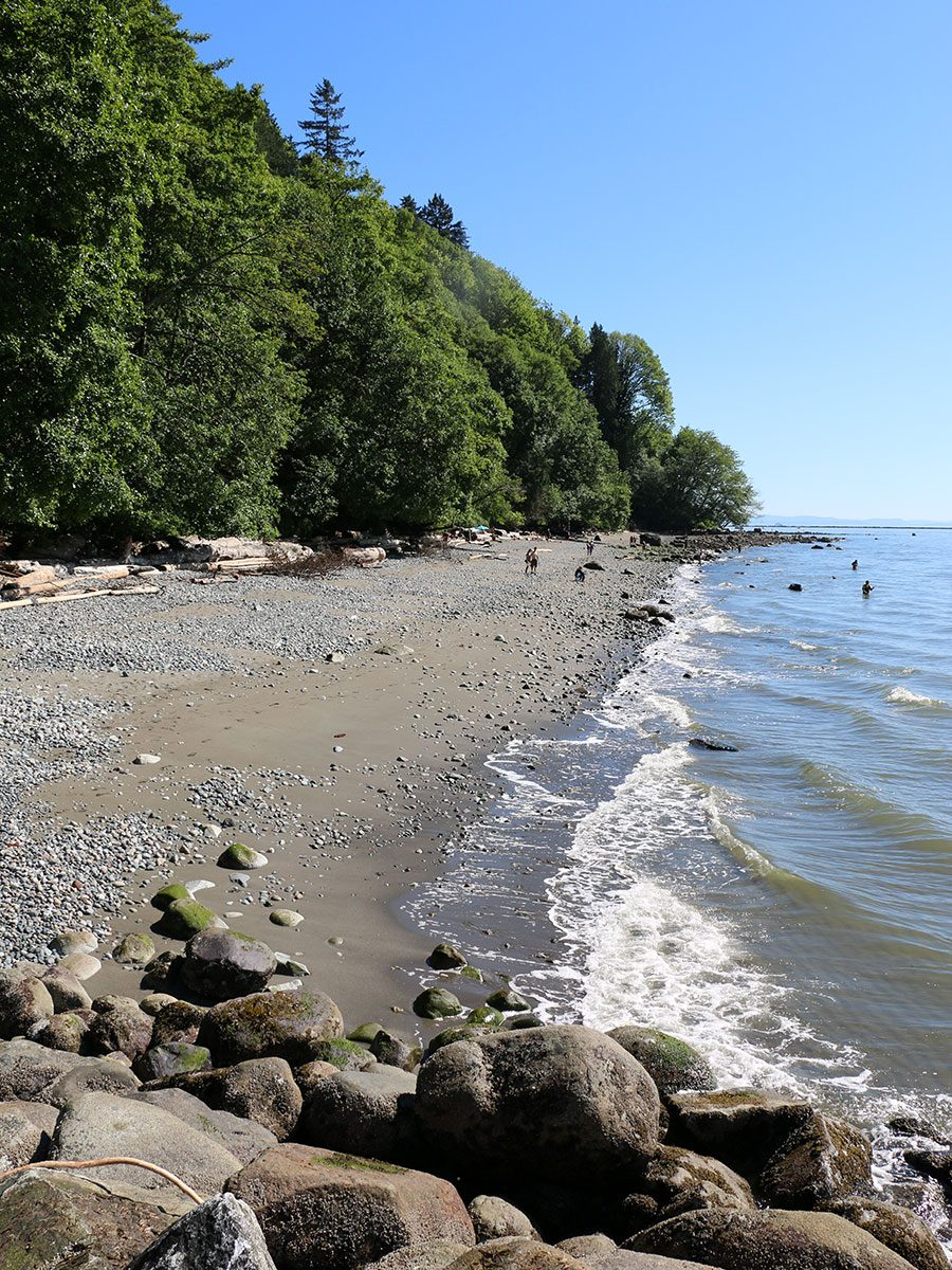 Foreshore Trail
