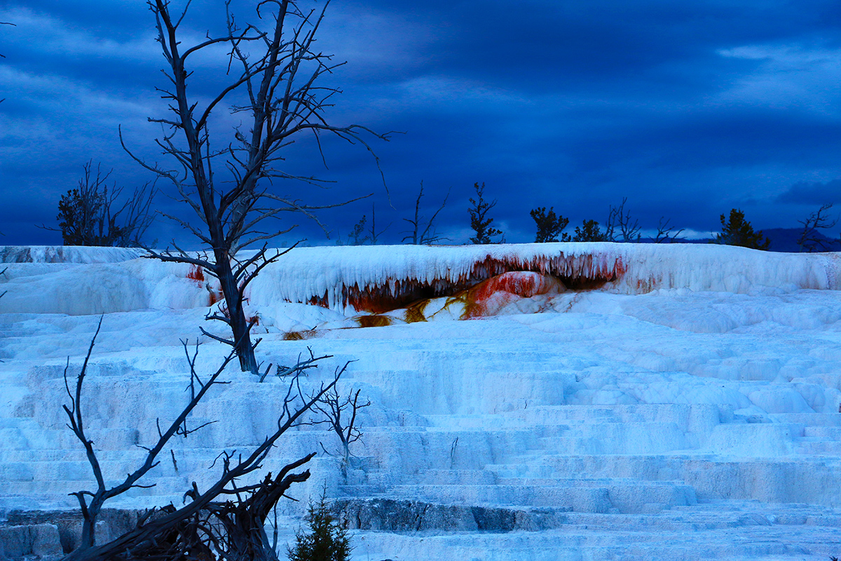16 - Yellowstone (Mammoth Hot Springs Terraces)