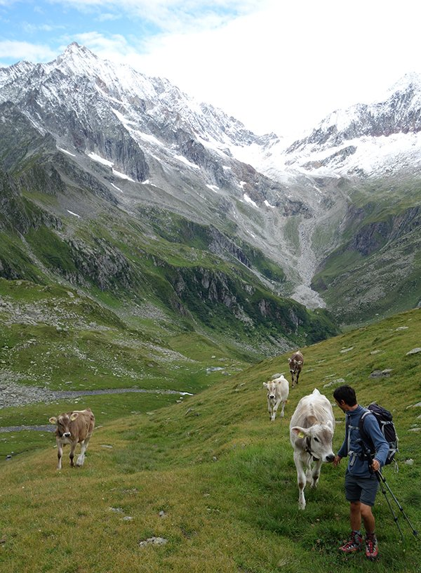 In compagnia all'Alpe Porcareccia
