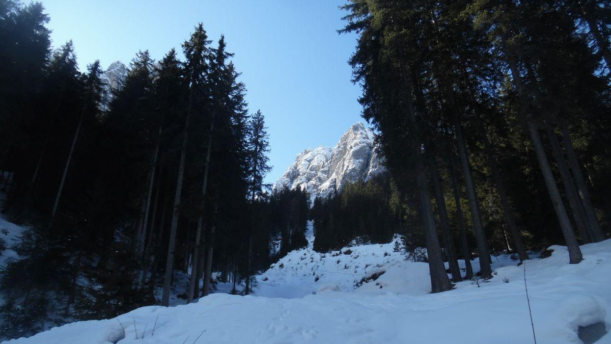 Canalone Vallaccia e val Monzoni