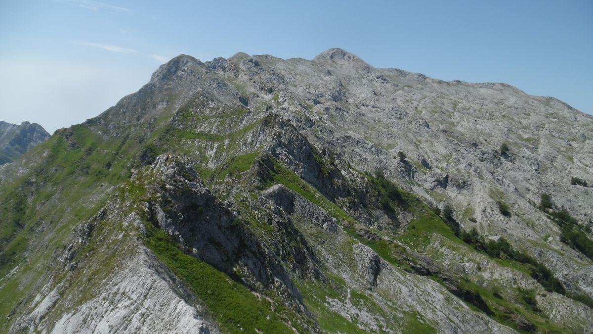 Tambura - Roccandagia cresta
