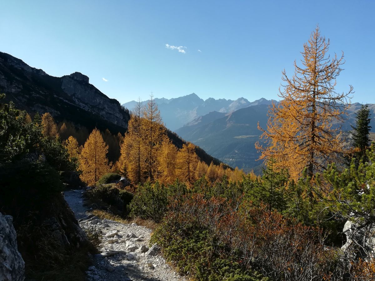 Panorami in discesa