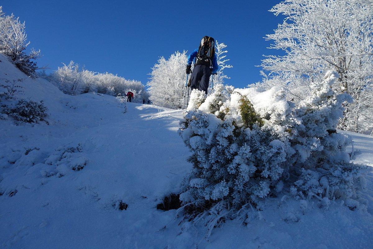 Coreografie invernali
